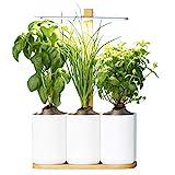 Lilo, Ihr smarter Indoor-Garten ❃ Bauen Sie das ganze Jahr über...