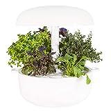 Plantui sg6 w Smart Garden, Weiß, 29x 29x 37cm