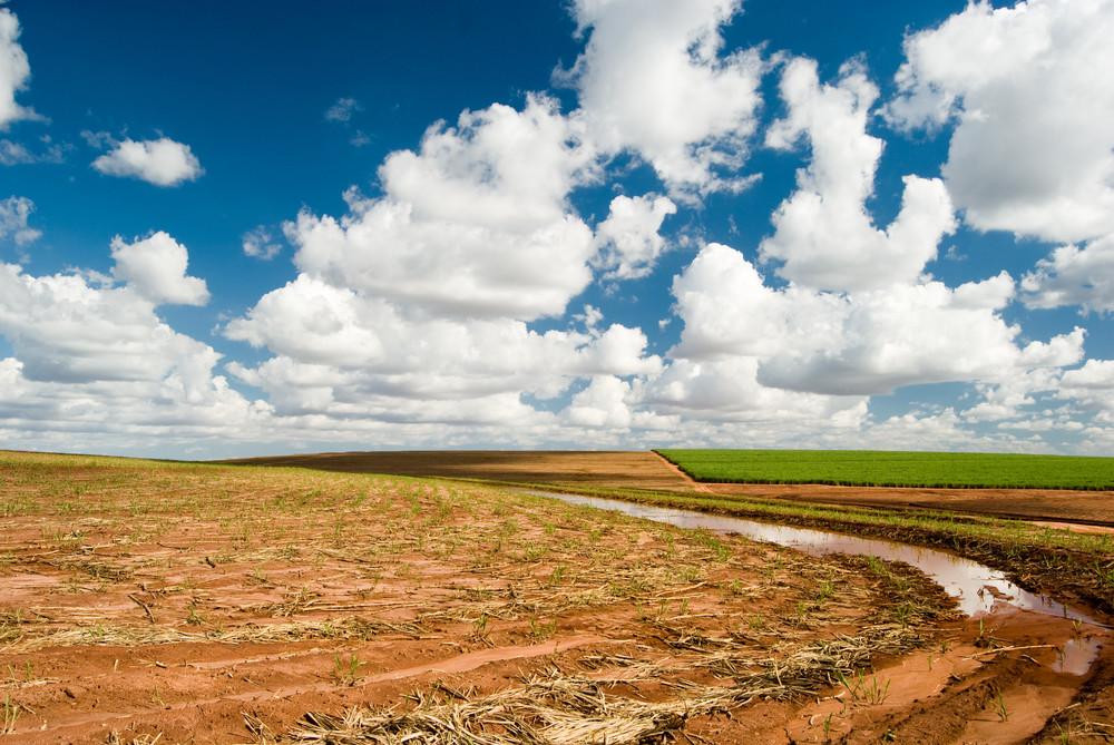 Bodenerosion und die Vorteile der Hydroponik
