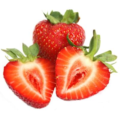 Hydroponik Pflanze Erdbeere