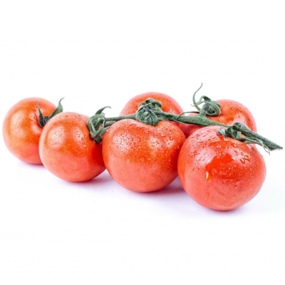 Hydroponik Pflanze Tomate