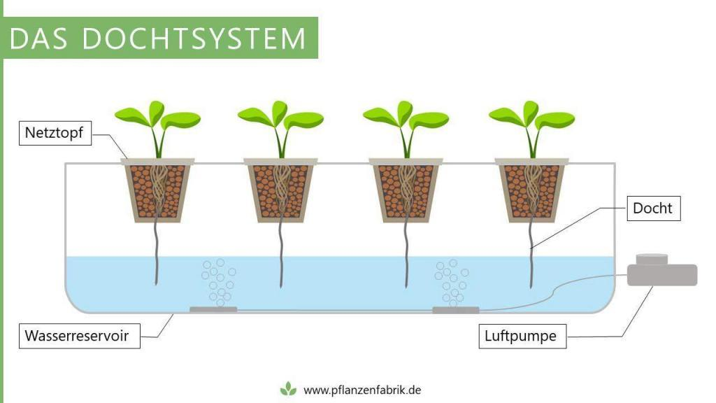 Dochtsystem mit einer Luftpumpe