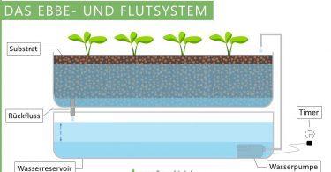 Ebbe- und-Flutsystem der Hydroponik (Hydroponik System)