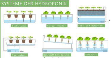 Hydroponik-Systeme