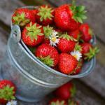 rote Erdbeeren in Eimer