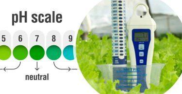 ph-wert für hydroponische pflanzen und ec-wert für hydroponische pflanzen