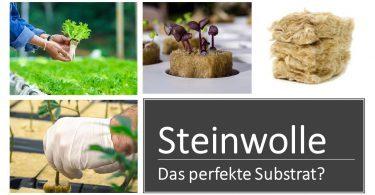 hydroponic steinwolle substrat für Hydroponik