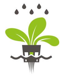 Vorteil hydroponic spart Wasser