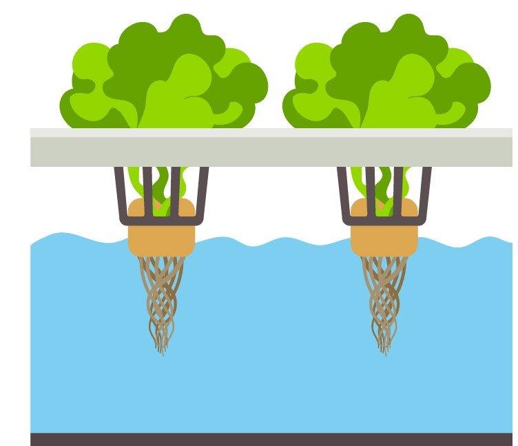 hydroponic-system für indoor garden