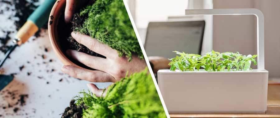 smart-indoor-gardening