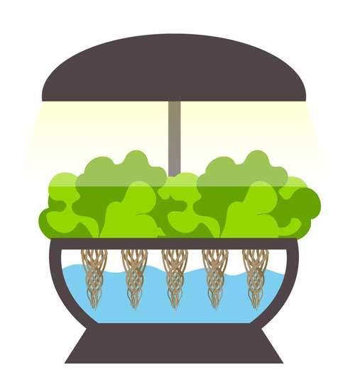 smart-indoor-gardening-system