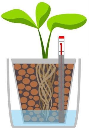 Hydrokultur-Grafik-Funktion