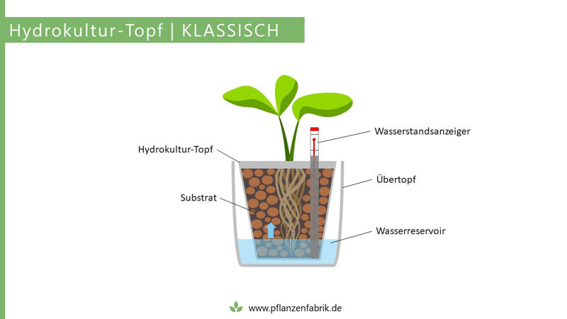 Hydrokultur-Topf mit Übertopf