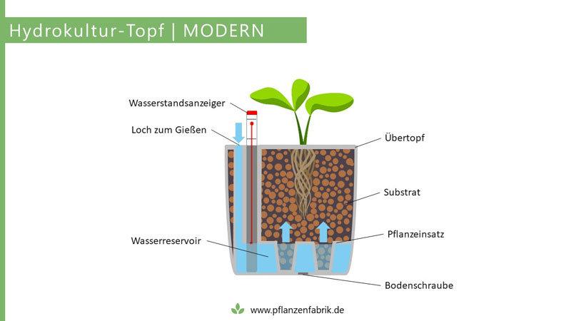 Moderner Topf für die Hydrokultur
