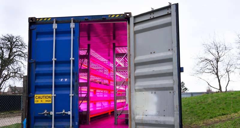 vertikal Farming Container-Farm