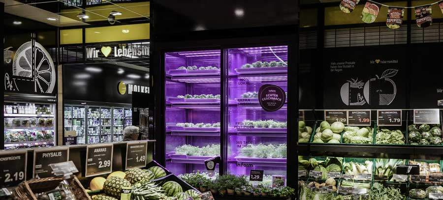 infarm_in-store-farm
